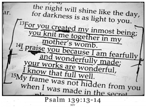 Psalm-139-13-14-web-300x221